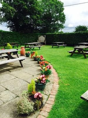 M27 dog-friendly pub with B&B and amble, Hampshire - Driving with Dogs