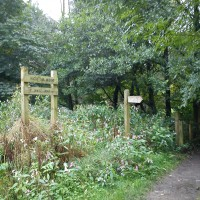 New Mills Mousley Bottom dog walk (via Millenium Walkway), Derbyshire - Dog walks in Derbyshire