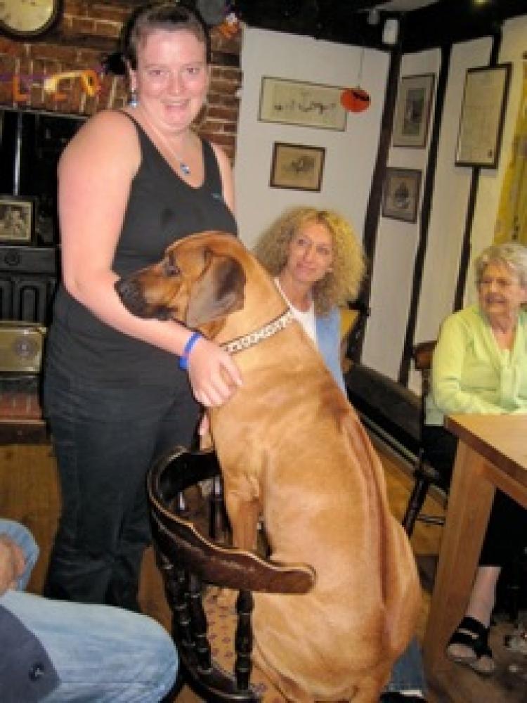 Queen's Head in Eye dog-friendly pub with dog walks, Suffolk - Dog walks in Suffolk