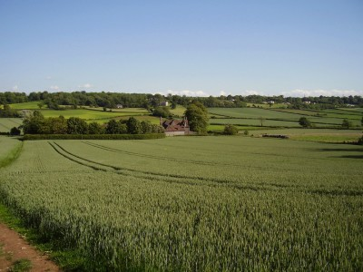 M5 Junction 16 dog walk and pub, Gloucestershire - Driving with Dogs