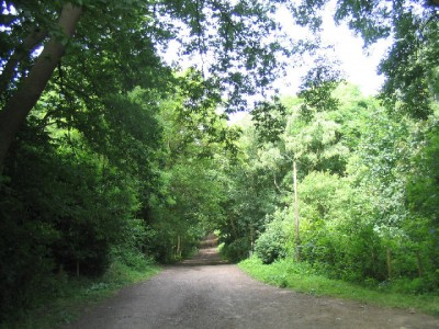 Havering Country Park dog walks, Essex - Driving with Dogs