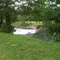 Bridgend dog walk, Wales - Dog walks in Wales