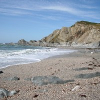 Rockham Bay dog-friendly beach, Devon - Dog walks in Devon