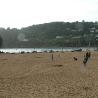 Mill Bay dog-friendly beach, Devon - Dog walks in Devon