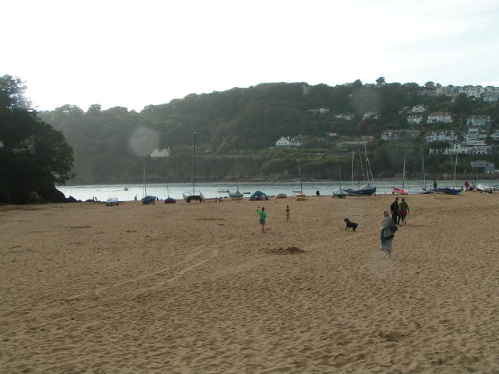 Mill Bay dog-friendly beach, Devon - Dog walks in Devon