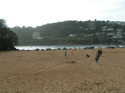 Mill Bay dog-friendly beach, Devon - Driving with Dogs