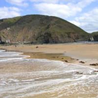 A39 dog-friendly beach and pub, Devon - Dog walks in Devon