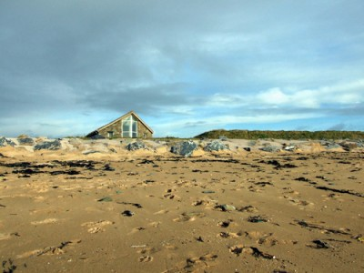 Garrylucas dog-friendly beach, RoI - Driving with Dogs