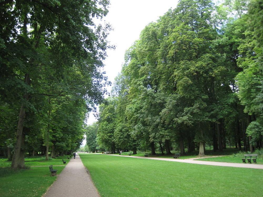 Parc de la Colombière dog walk, Dijon, France - Image 2