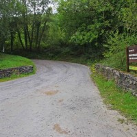 Ballycuggaran dog walk, RoI - Dog walks in Ireland
