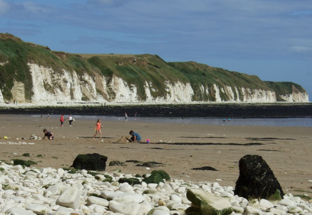 Sewerby dog walk with dog-friendly beach and pub, Yorkshire - Dog walks in Yorkshire