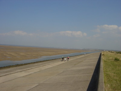 Meols Beach - dog-friendly, Wirral - Driving with Dogs