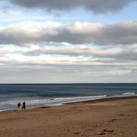 Spittal dog-friendly beach, Northumberland - Dog walks in Northumberland