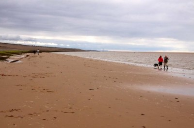 Cafes, shops and a dog-friendly beach, Wirral - Driving with Dogs