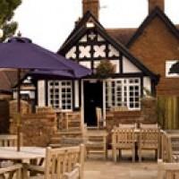 Bunbury dog-friendly pub and dog walks, Cheshire - Dog walks in Cheshire