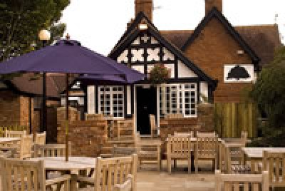 Bunbury dog-friendly pub and dog walks, Cheshire - Driving with Dogs