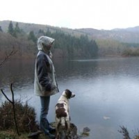 Dog Walking Service, Fife, Scotland - Scotland dog service