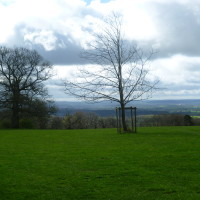 Castle Walks near Yarpole, Herefordshire - Dog walks in Herefordshire