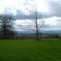 Castle Walks near Yarpole, Herefordshire - Dog walks in Herefordshire