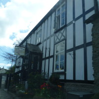 Riverside dog-friendly pub and dog walk, Herefordshire - Dog walks in Herefordshire