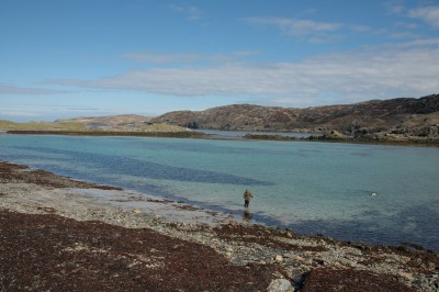 Scourie dog-friendly beach, Scotland - Driving with Dogs