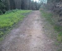 Cleveland Way dog walk near Boltby, Yorkshire - Dog walks in Yorkshire