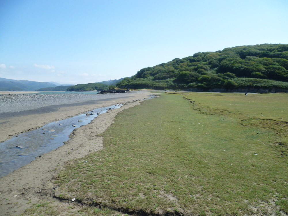 Barmouth dog walk, Gwynedd, Wales - Dog walks in Wales