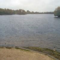 A38 Branston Water Park dog walk, Staffordshire - Dog walks in Staffordshire