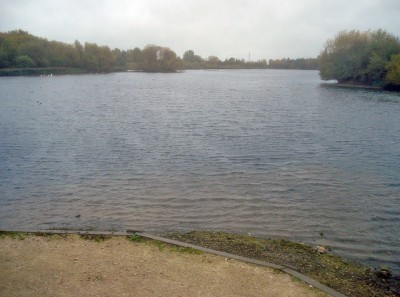 A38 Branston Water Park dog walk, Staffordshire - Driving with Dogs