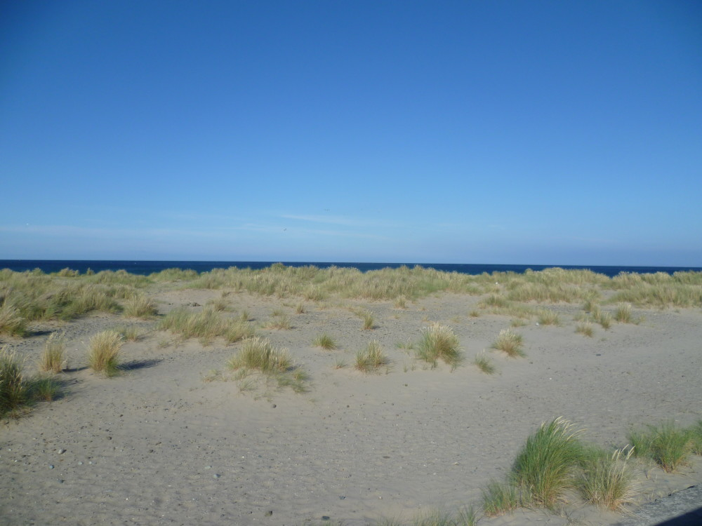 Long, sandy dog-friendly beach Barmouth, Wales - Dog walks in Wales