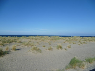 Long, sandy dog-friendly beach Barmouth, Wales - Driving with Dogs