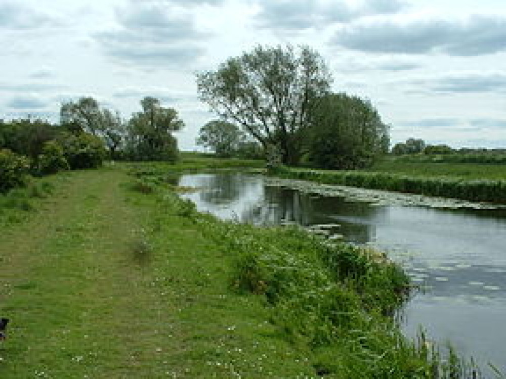 Pocklington Canal dog walk, Yorkshire - Image 1