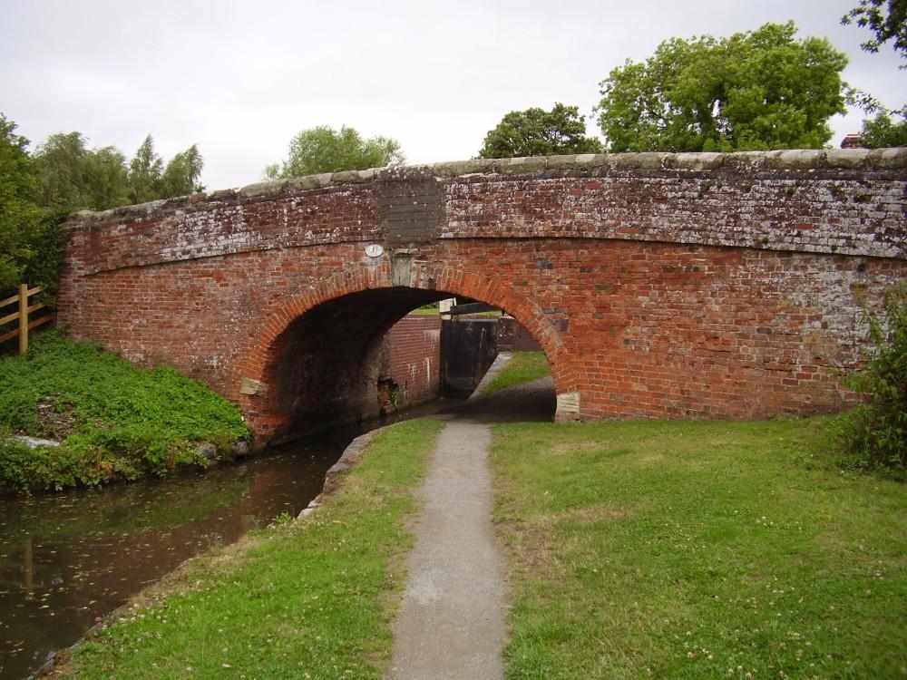 Stratford-upon-Avon canal dog walk, Warwickshire - Dog walks in Warwickshire