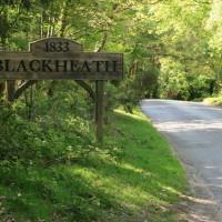 Blackheath Common dog walk, Surrey - Dog walks in Surrey