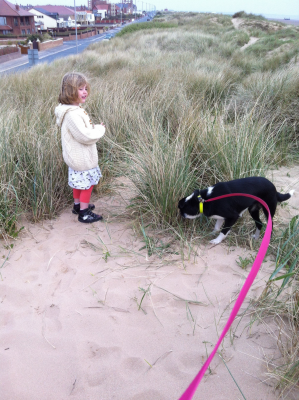 St Annes dog-friendly beach, Lancashire - Driving with Dogs