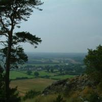 Haughmond Hill, Shropshire - Dog walks in Shropshire