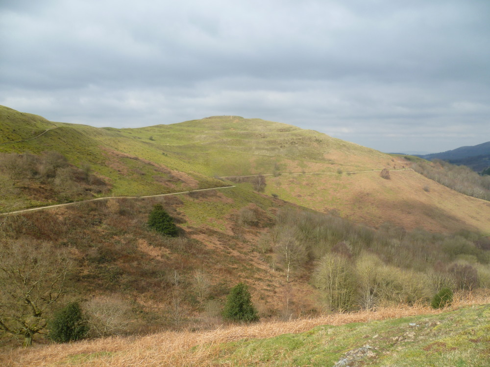 Malvern Hills dog walks, Worcestershire - Dog walks in Worcestershire