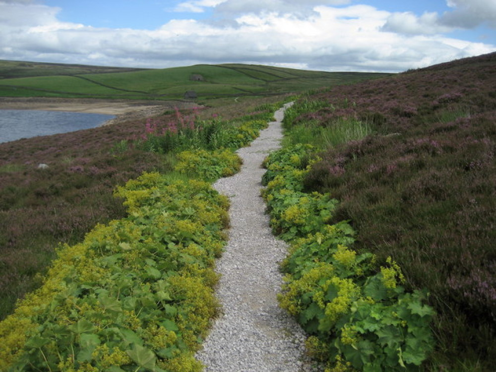 Peaceful circular dog walk near Grassington, Yorkshire - Dog walks in Yorkshire