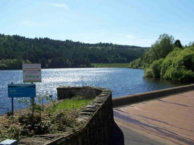 A57 quiet reservoir dog walk and dog-friendly pub near Sheffield, Yorkshire - Driving with Dogs