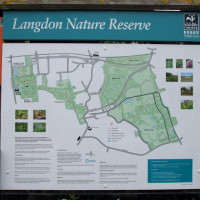 Langdon Hills Nature Reserve dog walks, Essex