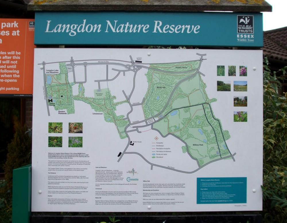 Langdon Hills Nature Reserve dog walks, Essex - Dog walks in Essex