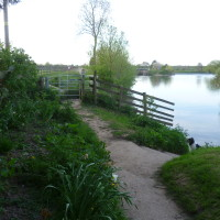 Worcester dog-friendly pub and walk, Worcestershire - Dog walks in Worcestershire