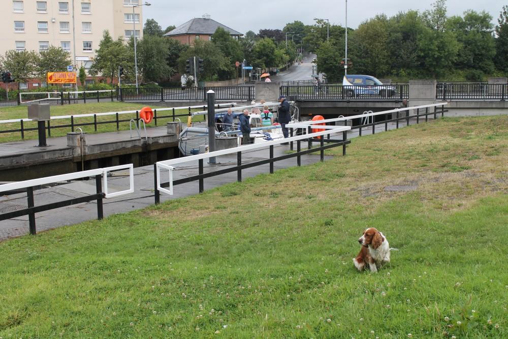 A82 dog walk from Bowling near Dumbarton, Scotland - Dog walks in Scotland