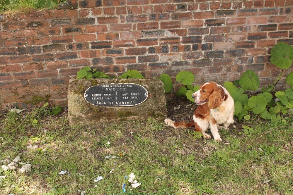 A82 dog walk from Blairardie in Glasgow, Scotland - Dog walks in Scotland