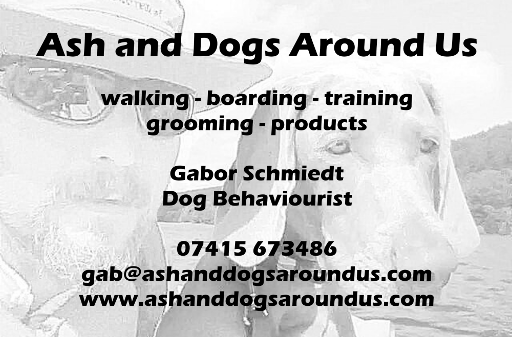 Ash and Dogs Around Us, Bedfordshire - Dog behaviourist