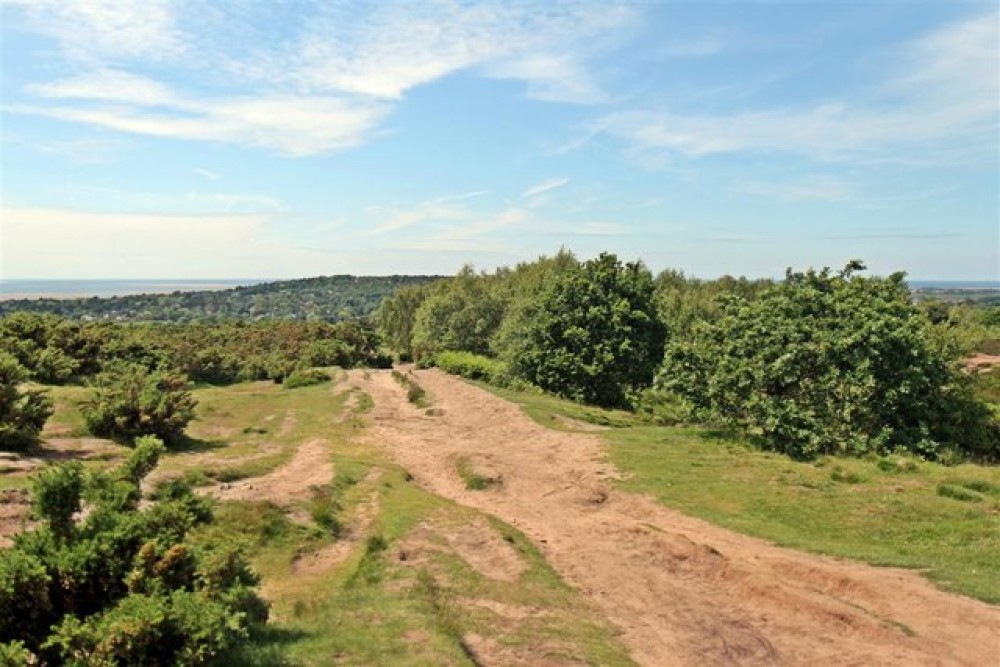 Thurstaston Common and Hill, Merseyside - Dog walks in Merseyside