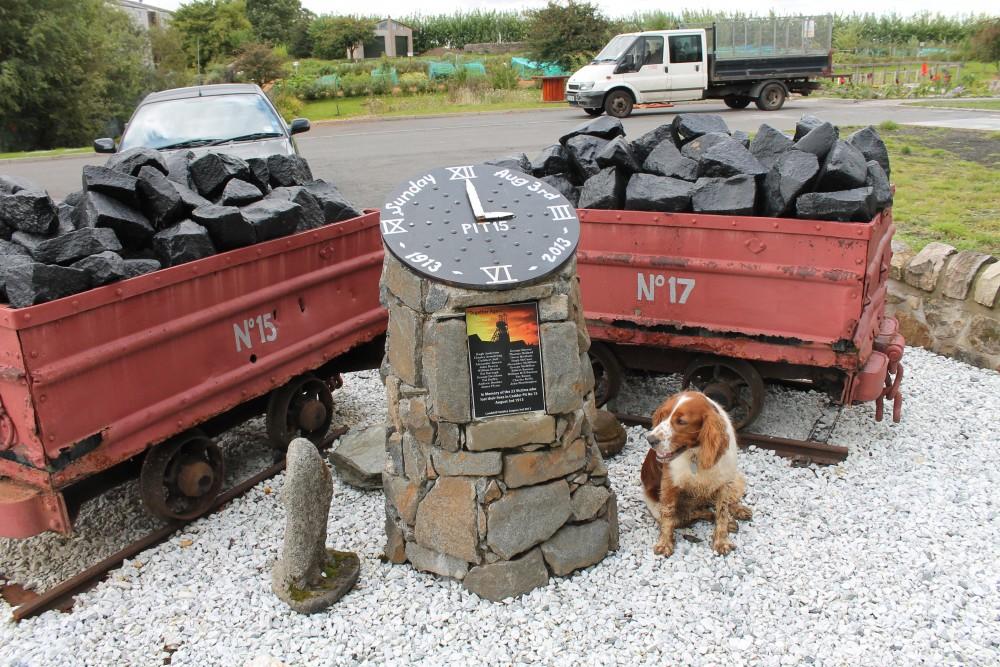A81 dog walk in Maryhill, Glasgow, Scotland - Dog walks in Scotland