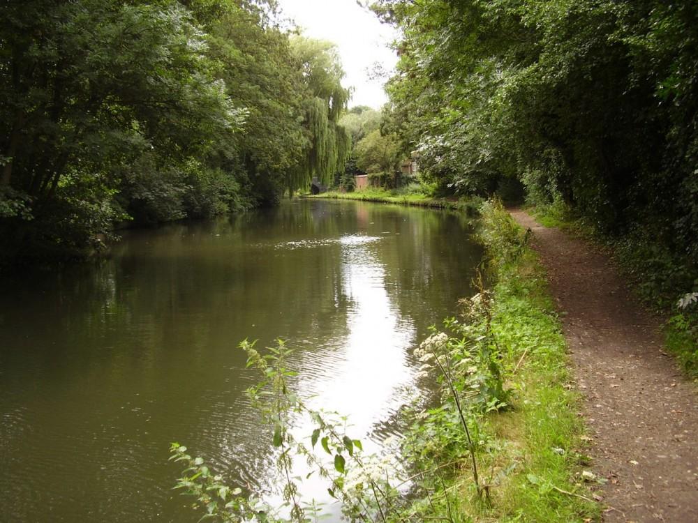 Apsley Canal dog walk, Hertfordshire - Dog walks in Hertfordshire