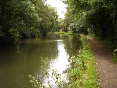 Apsley Canal dog walk, Hertfordshire - Driving with Dogs