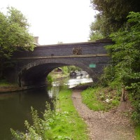 Liverpool Canal Link dog walk - Image 1